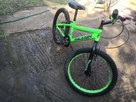 Raleigh 20 inch