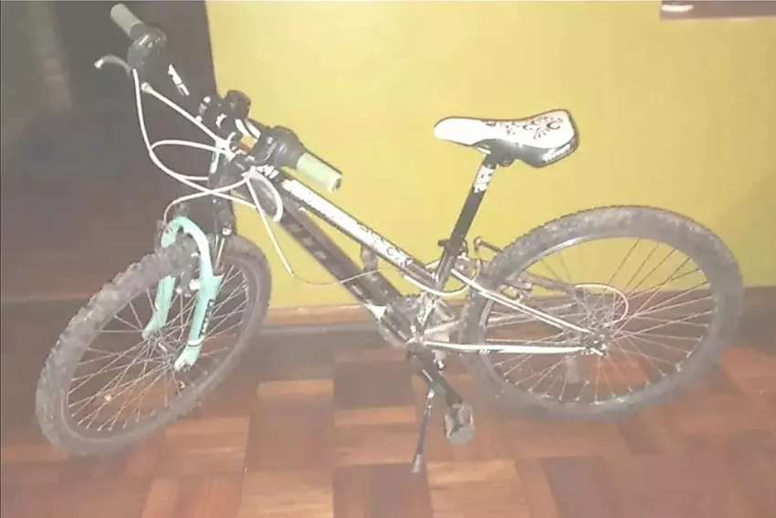 24 inch Titan bicycle for sale 0