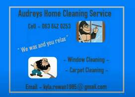 Windows & Carpet Cleaning