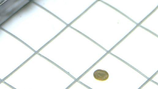 Siatka zgrzewana do budowy klatek, wolier 2mm Rolka 25 m ! Strzyżów - image 1