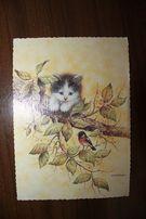Przepiękne pocztówki z małymi kotkami