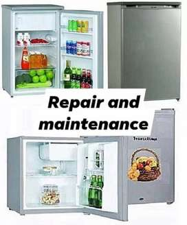 Fridges and freezers repair