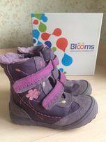 Ботинки Blooms сапоги зима осень