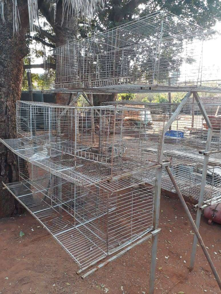 CAGES FOR LAYING CHICKENS 0