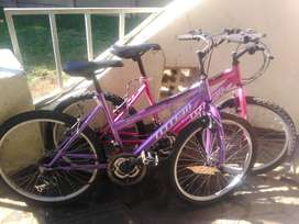 I have two Totem X-Country off-road bicycles adult size for R1700