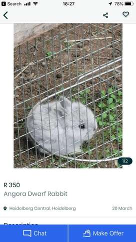 If yiu got a rabbits for 150 or100