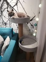NR 1 Drapak dla kota solidny 120CM legowisko solidny Wysyłka GRATIS