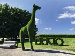 Топиарий фигурка Жирафа. Топиарная фигура