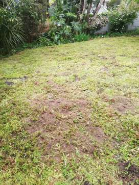 Roll on lawns, Topsoil, potting soil, lawn dressing for sale