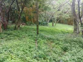 Vacant Land / Plot for Sale in Bellair