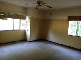 Large room available in a shared flat in Scottsville