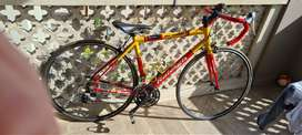 SIZE SMALL RALEIGH RC1000 ROADBIKE FOR SALE