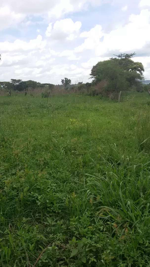 Land for rent in masindi 0
