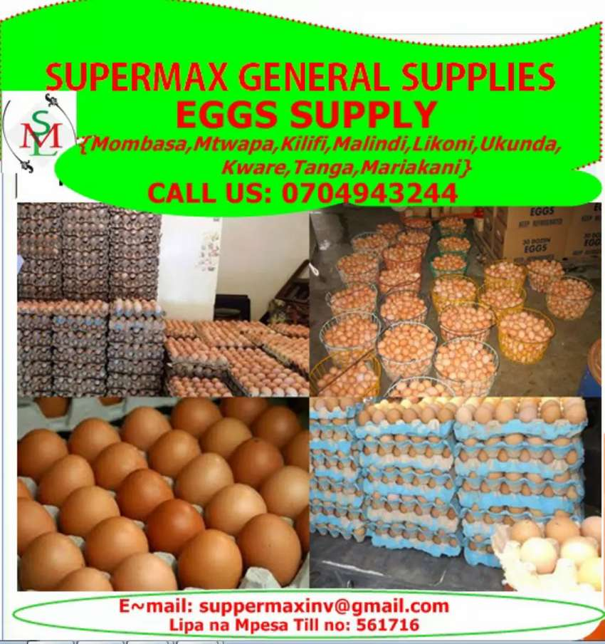 Eggs Wholesale and Supply 0