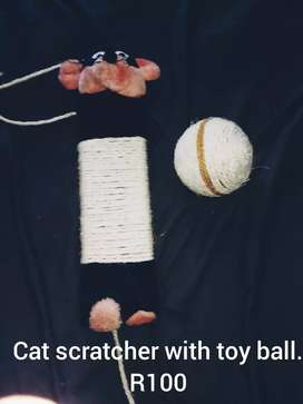 Cat scratch post and toy