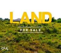5000sqm of land for mini estate Development for sale in Apo. C of O 0