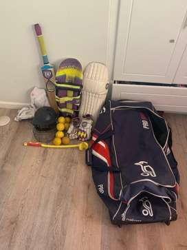 DP hybrid cricket kit