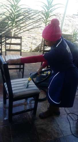 Cleaning and Garden Service