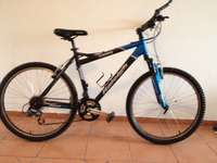 Image of Raleigh X-Country
