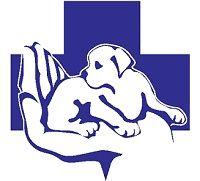 Ветеринарная помощь на дому, Кастрация, Стерилизация собак и кошек.
