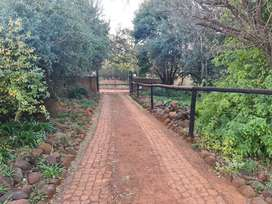 PRICE REDUCED 4 hectare Plot with 2 houses, borehole, and ample buildi