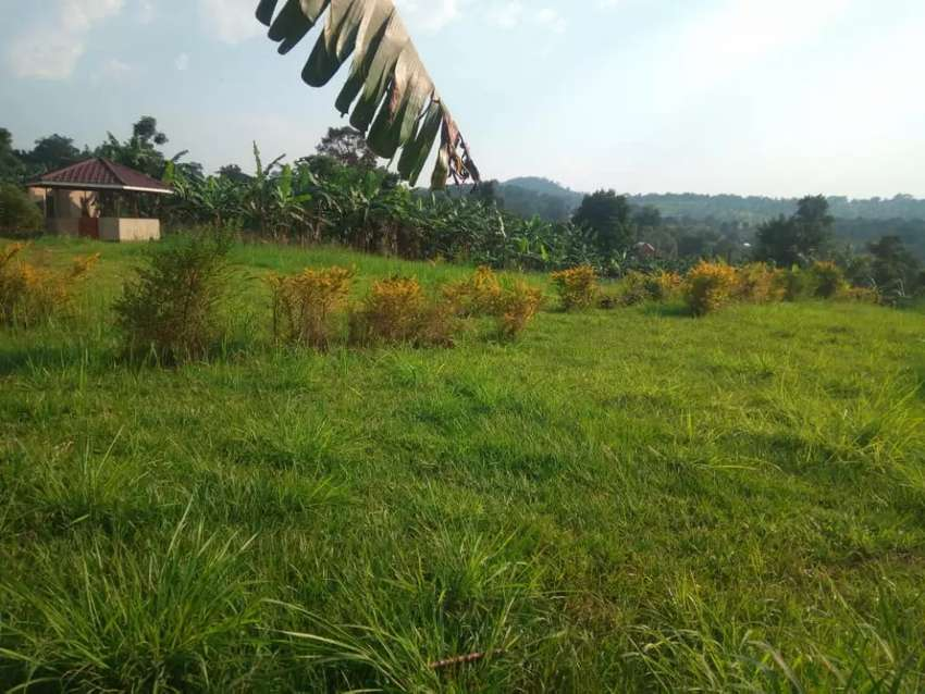Land for Rent in Kulambiro on the Road 0