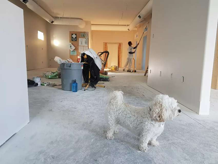 Post Construction and Renovations Cleaning 0