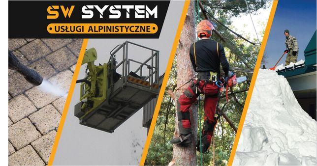 Podlaskie,Wycinka drzew - Usługi alpinistyczne Wysokie Mazowieckie - image 1