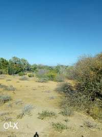 200 acres on sale in kilifi county 0