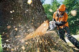 Срезание деревьев та корчевание пней