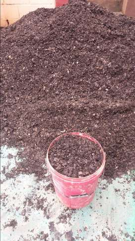 Horse manure compost