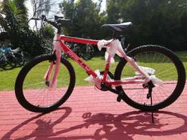 Brand new 26inch mountain mtbs bicycles specials R1300
