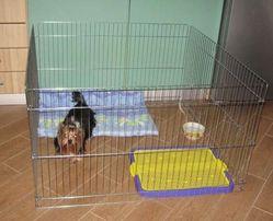 Вольер клетка ясли манеж для собак кошек котят щенков 100х100х60h см