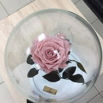 Роза в Колбе +коробка,гравировка.Тренд 2019 года