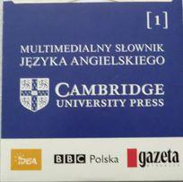 Słownik Cambridge angielsko - angielski na CD