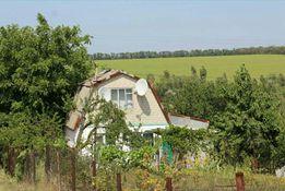 Продам или обменяю дачу в Вольнянском районе, село Дерезивка