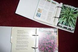 Dom pełen kwiatów ABC roślin doniczkowych