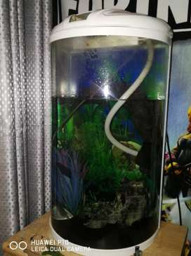 Fish tank for sale!! This is a luck