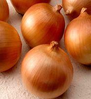 Семена лука халцедон и глобус