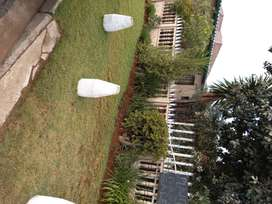 Neat 1 bed cottage to let Claremont/Jhb R3800