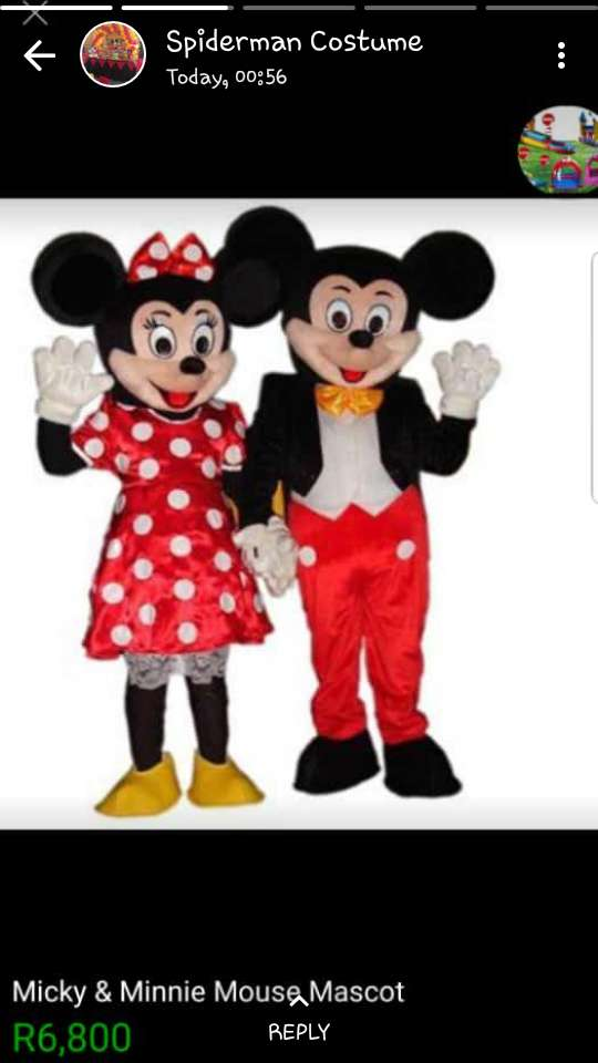 2nd hand Mickey & Minnie Mouse Costumes 0
