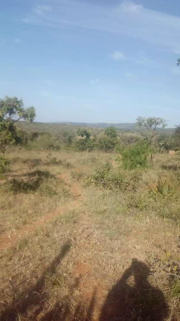 1acre of land on sale ideal for settlement,bordering road 0