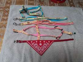 Small breed dogs harness