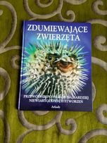 Zdumiewające zwierzęta - książka, zwierzęta