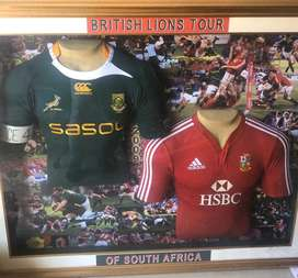 Springbok -British Lions Tour 3 D picture