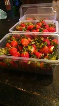 Strawberry punnets for packing fruits and meat 0