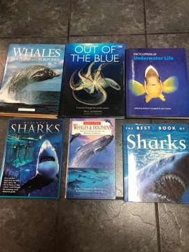 6 x Hard cover sharks, dolphins and ocean life books