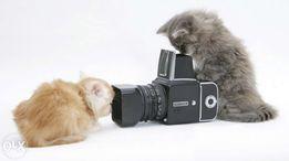 Відеозйомка Чернівці, відеооператор, відео кліп, можна й на годинку