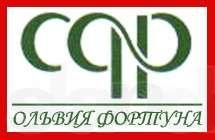 Регистрация ООО (ТОВ), СПД (ФОП), ЧП (ПП)