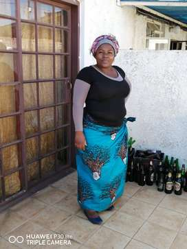Zim maid,nanny,cleaner needs full or part time work urgently